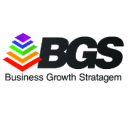 Business Growth Stratagem